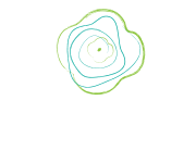 Poppy Design & Graphics